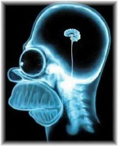 mituri-despre-creier