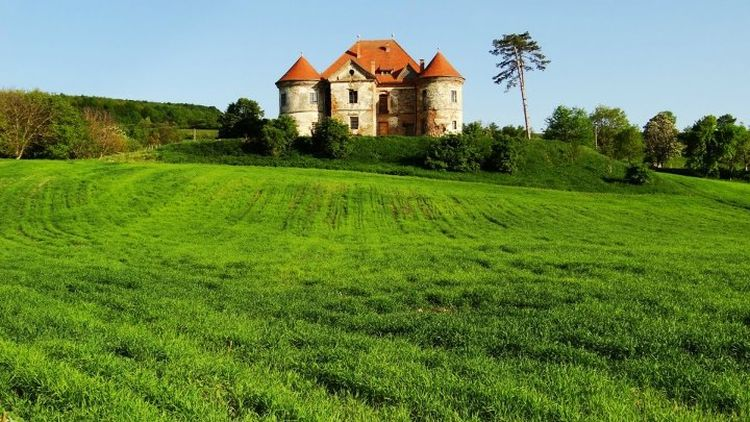 Castelul-Pekri-Ozd