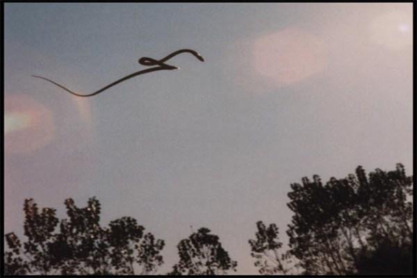sarpe zbura2